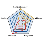 Multifunctional Flame Retardants